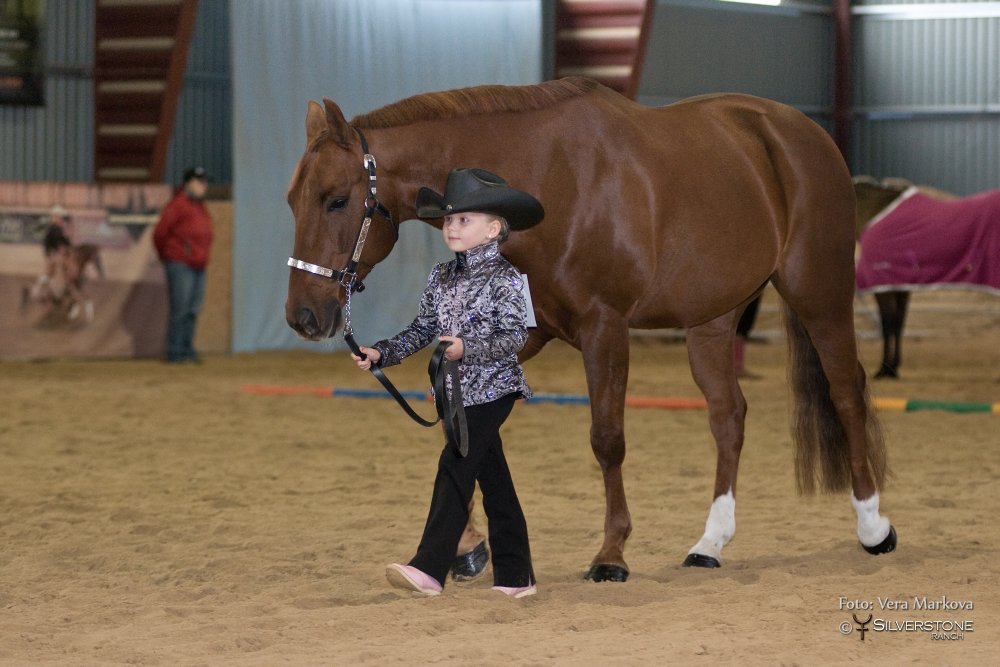 Showmanship At Halter